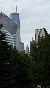 View from Millennium Park.