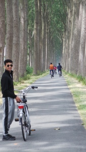 The gorgeous cycling path