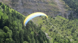 Paragliding -- they take you really close to the mountains.